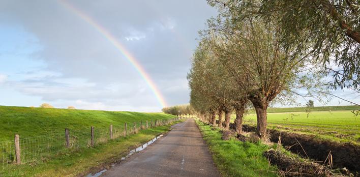 herfst-regenboog
