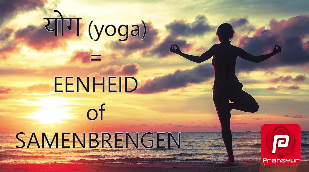 yoga betekent eenheid of samenbrengen