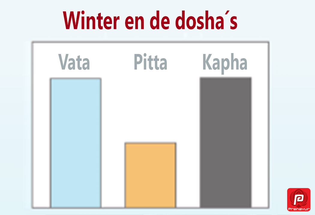 winter en de dosha's